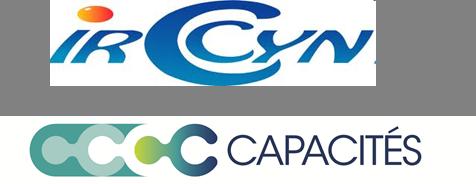 IrccynCapa